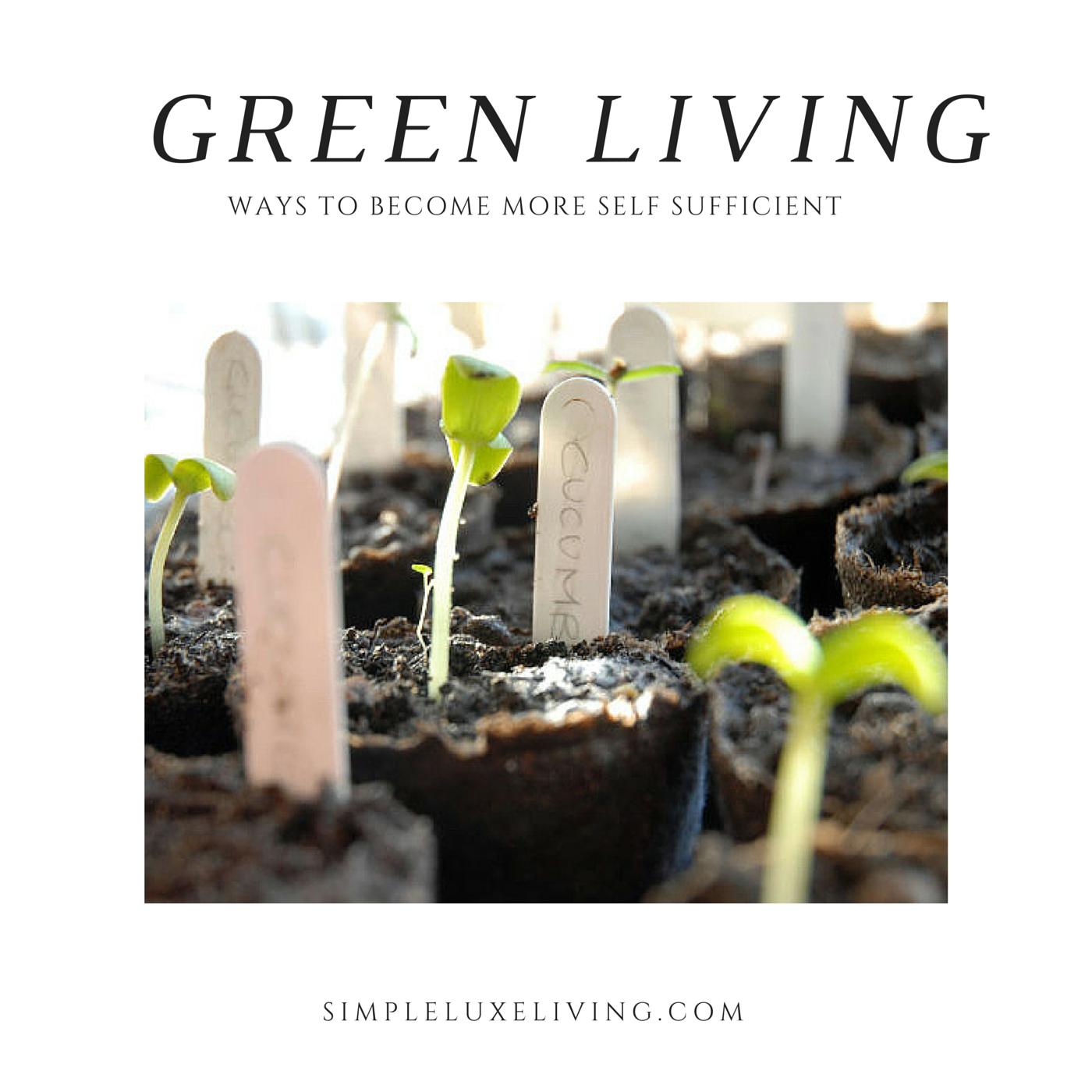 13 Ways To Live More Green Simple Luxe Living